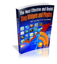 Effective Widgets and Plugins