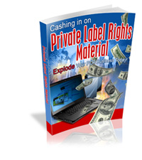 Cash In On PLR Material