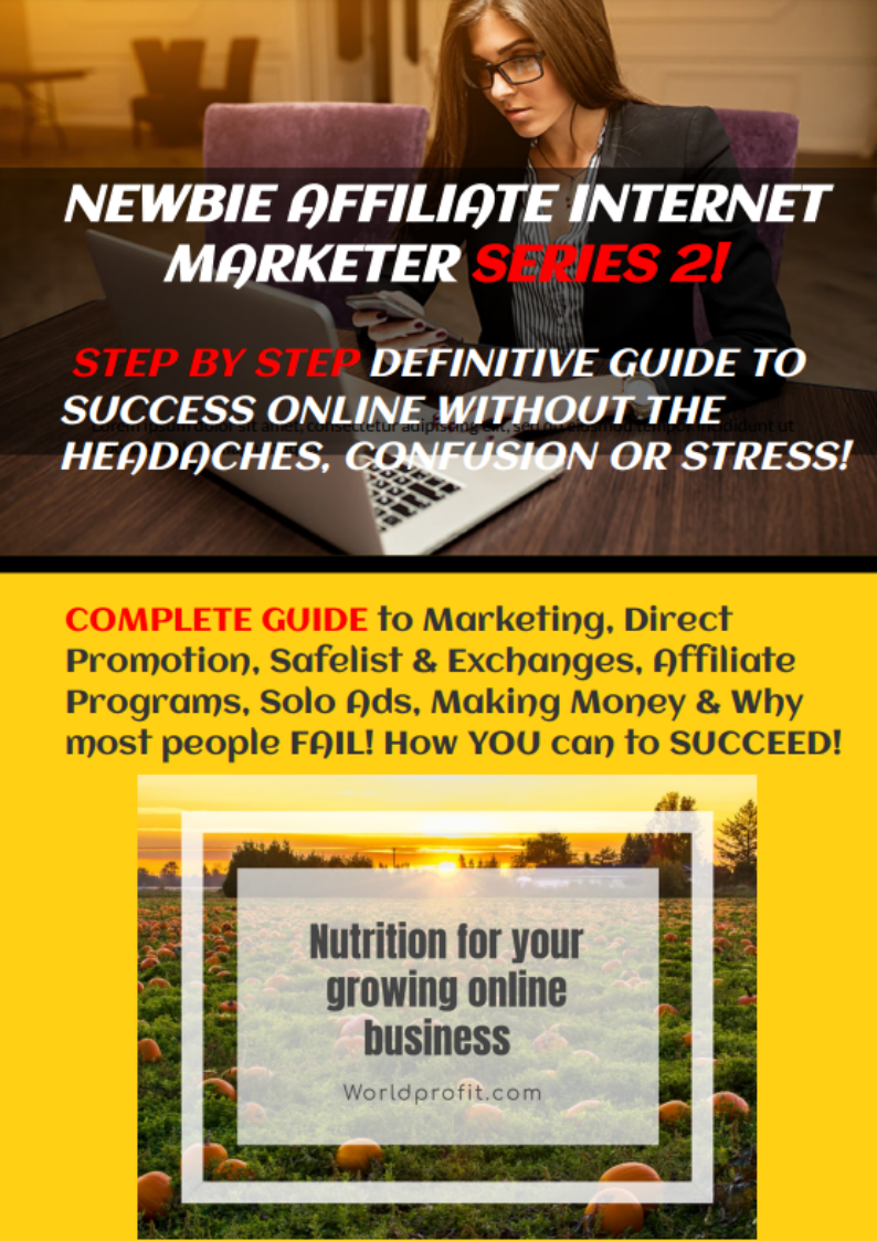 NEWBIE AFFILIATE INTERNET MARKETER SERIES 2